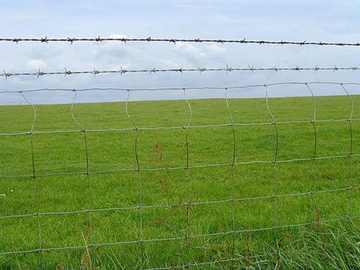 Galvanized Iron Field Fence with Barbed Wire
