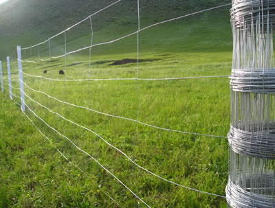 Grassland Field Fence, Flexible High Tensile Wire Fencing for Deers and Horses