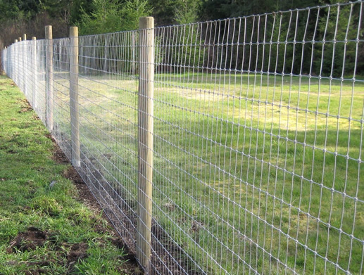 Fixed Knot Woven Wire Cattle Fencing